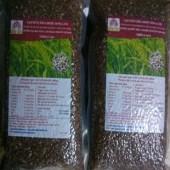 Gạo mầm thảo dược nông lâm (5kg)