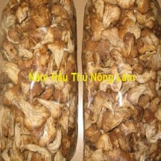 Nấm hầu thủ nông lâm (1kg)